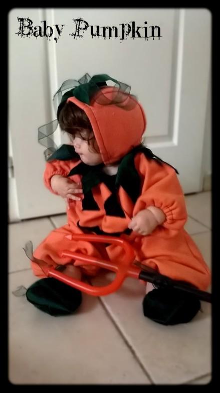Baby pumpkin 2