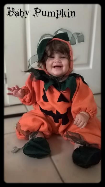 Baby pumpkin 4